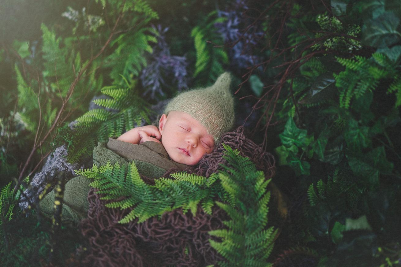 fotorgrafie - newborn
